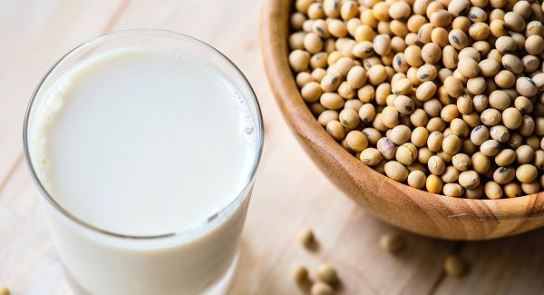 What is the difference between Whey and Casein protein